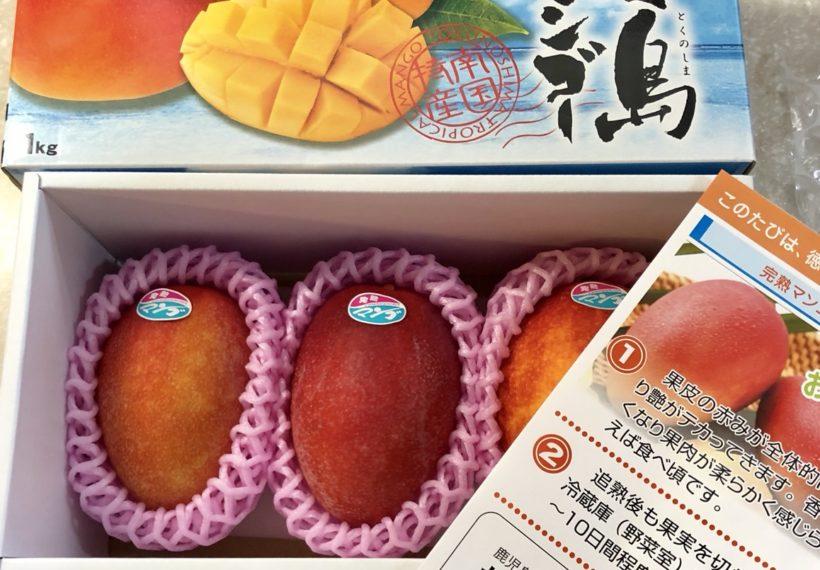 鹿児島県徳之島のふるさと納税でのお礼品のマンゴー